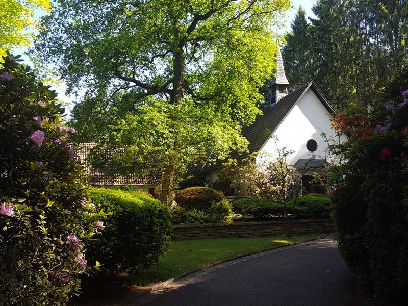 Zur Rhododendronblüte über den Waldfriedhof