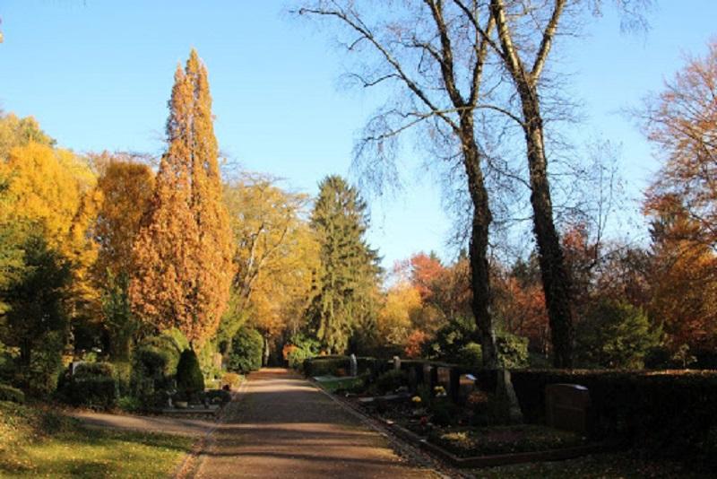 Der Waldfriedhof im Herbst